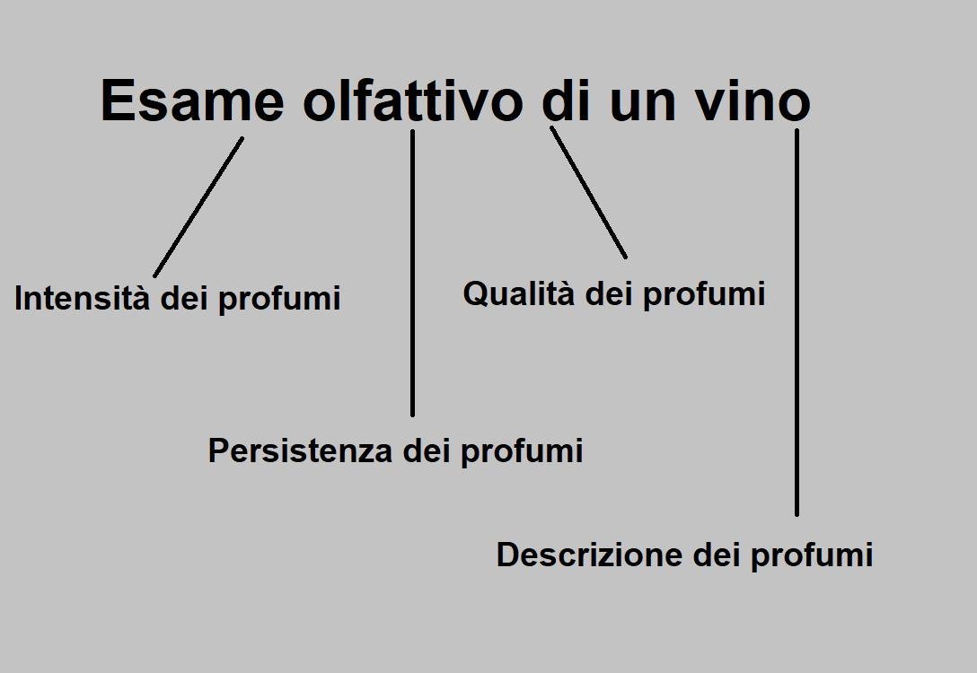 Intensità, Persistenza, Qualità e Descrizione dei Profumi del Vino