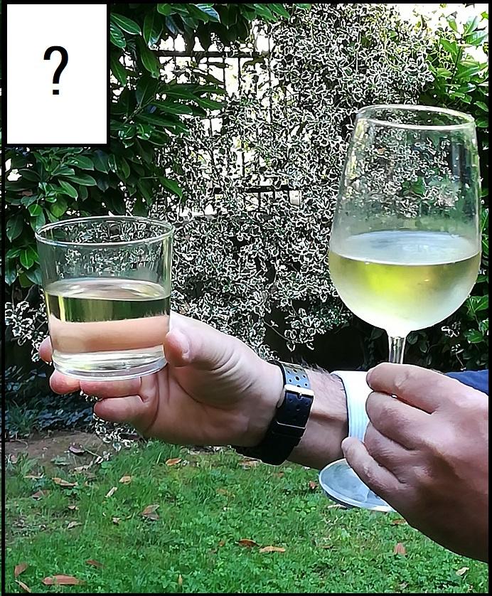 Come tenere in mano un bicchiere di vino